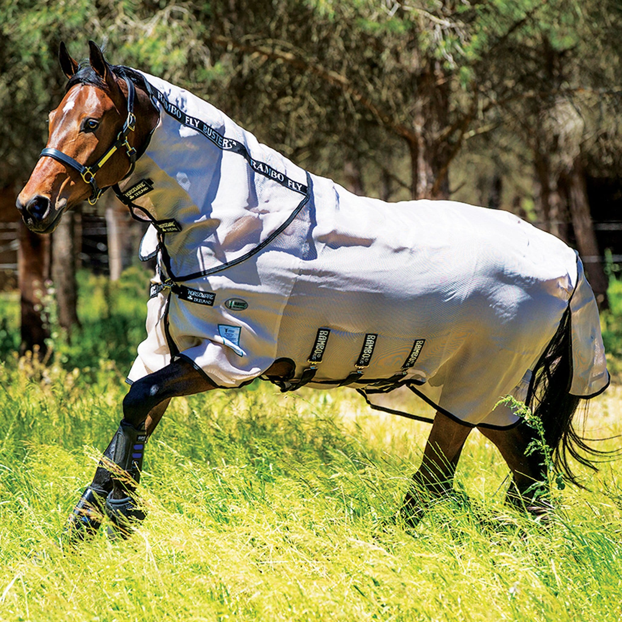 Rambo Vamoose® Fly Buster Fly Rug With Detachable Neck Cover AFAR0V Bay Horse Cantering Left Side