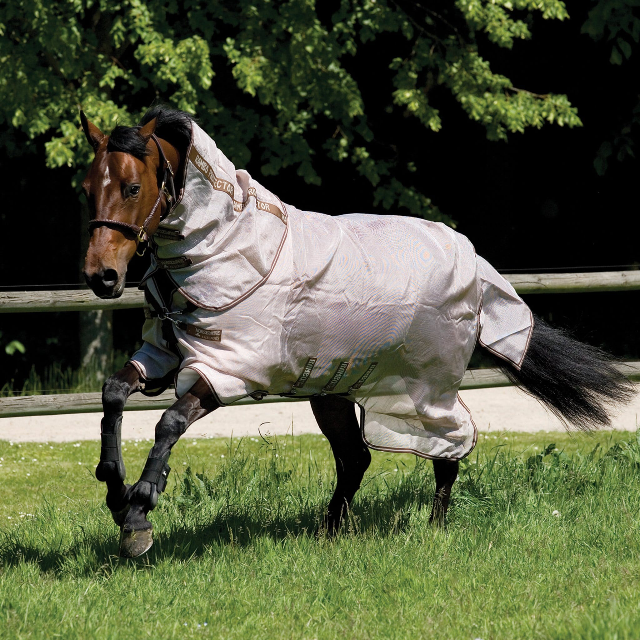 Rambo Protector Fly Rug With Detachable Neck Cover AFAR70 Bay Horse Cantering