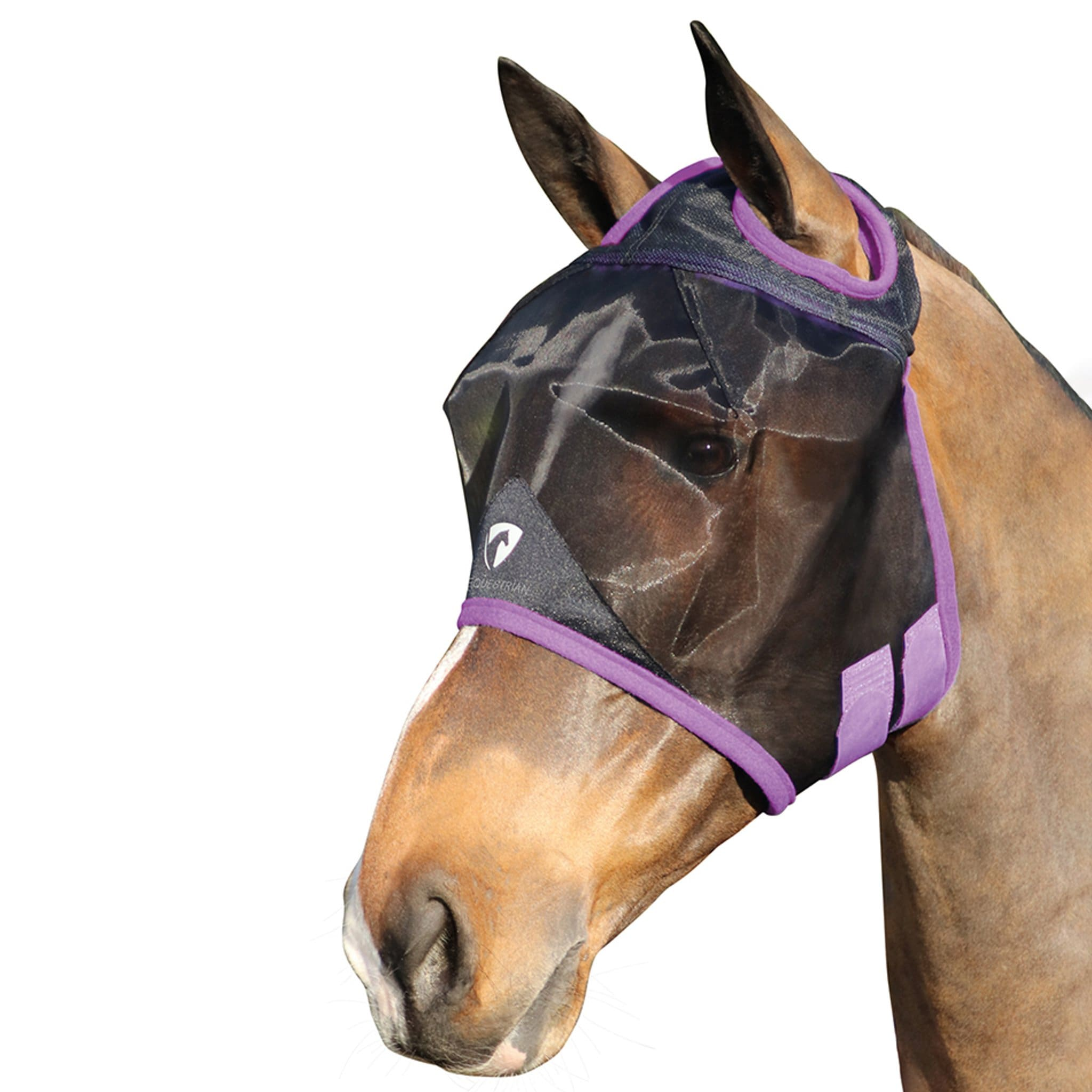 Hy Equestrian Mesh Half Mask Without Ears or Nose Black and Purple 27226