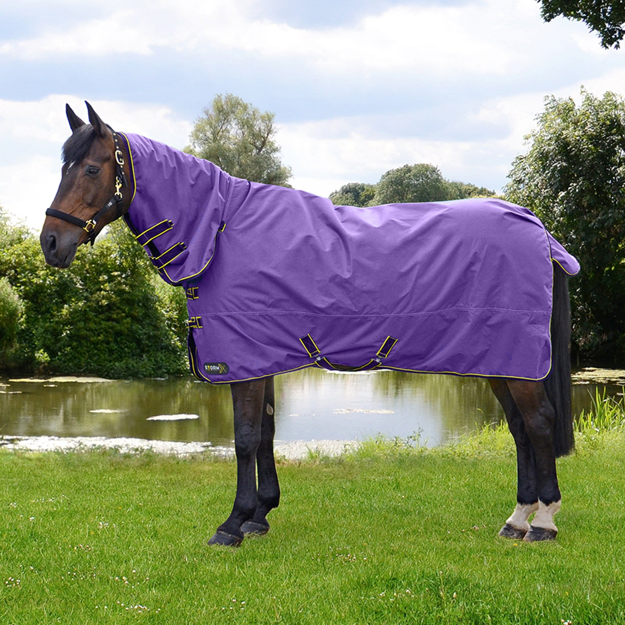 Hy StormX Original Lightweight 50g Combo Neck Turnout Rug 27835 Royal Purple On Horse By Pond