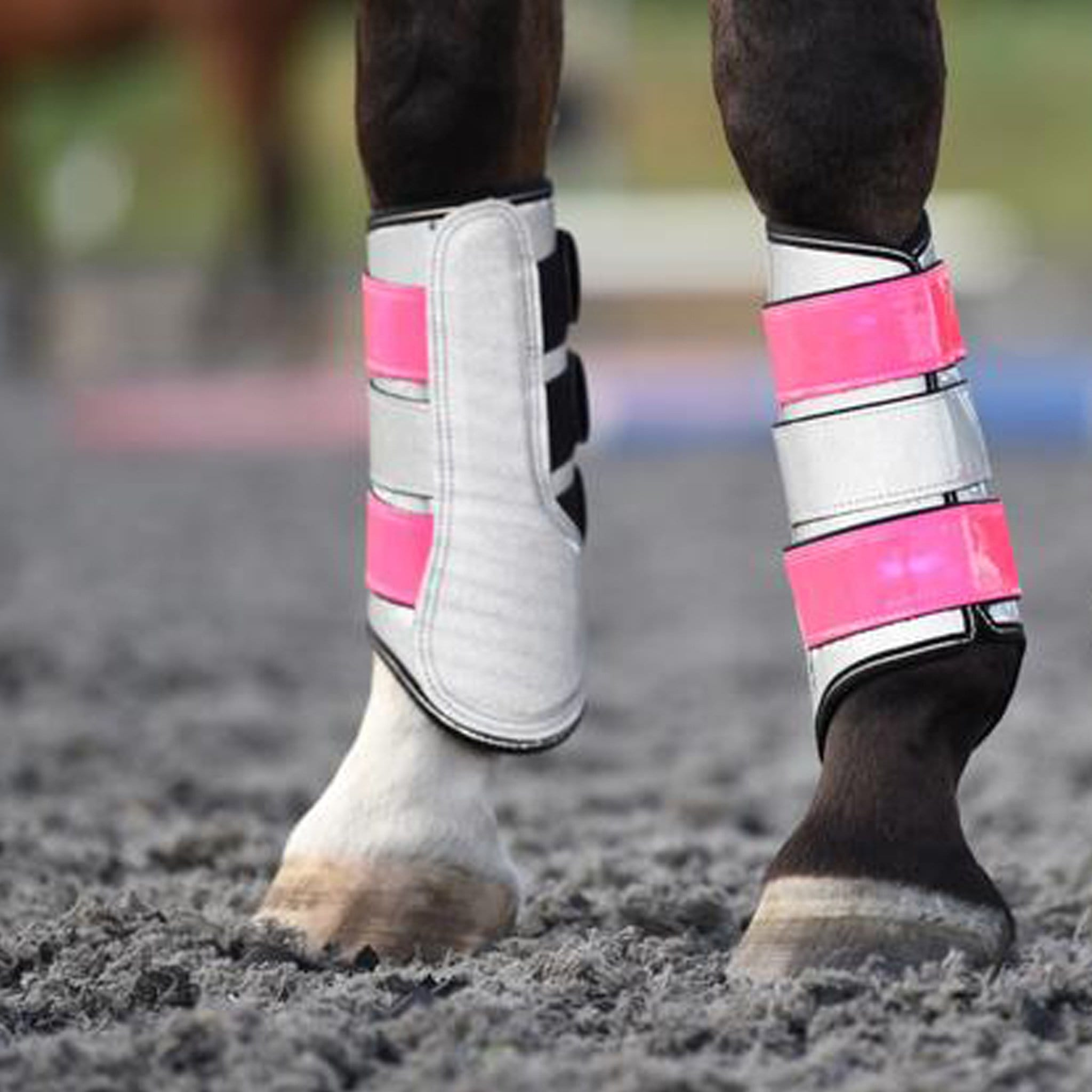 Equisafety Diamond Reflective Brushing Boots Pink On Horse