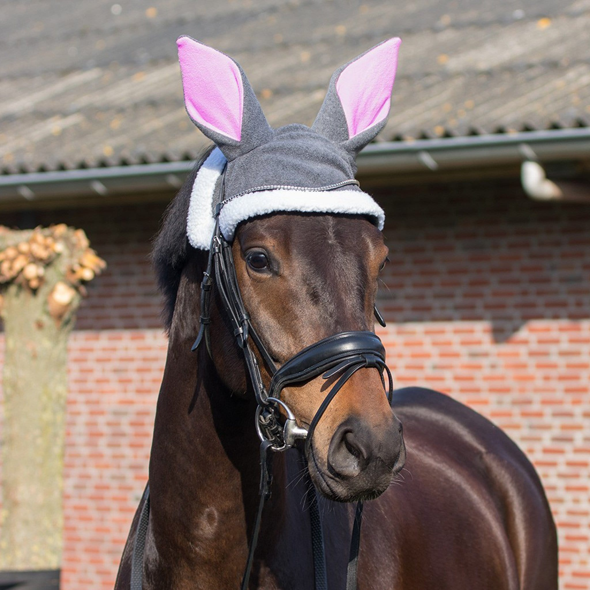 QHP Horse Easter Bunny Ears 5261 Grey On Horse