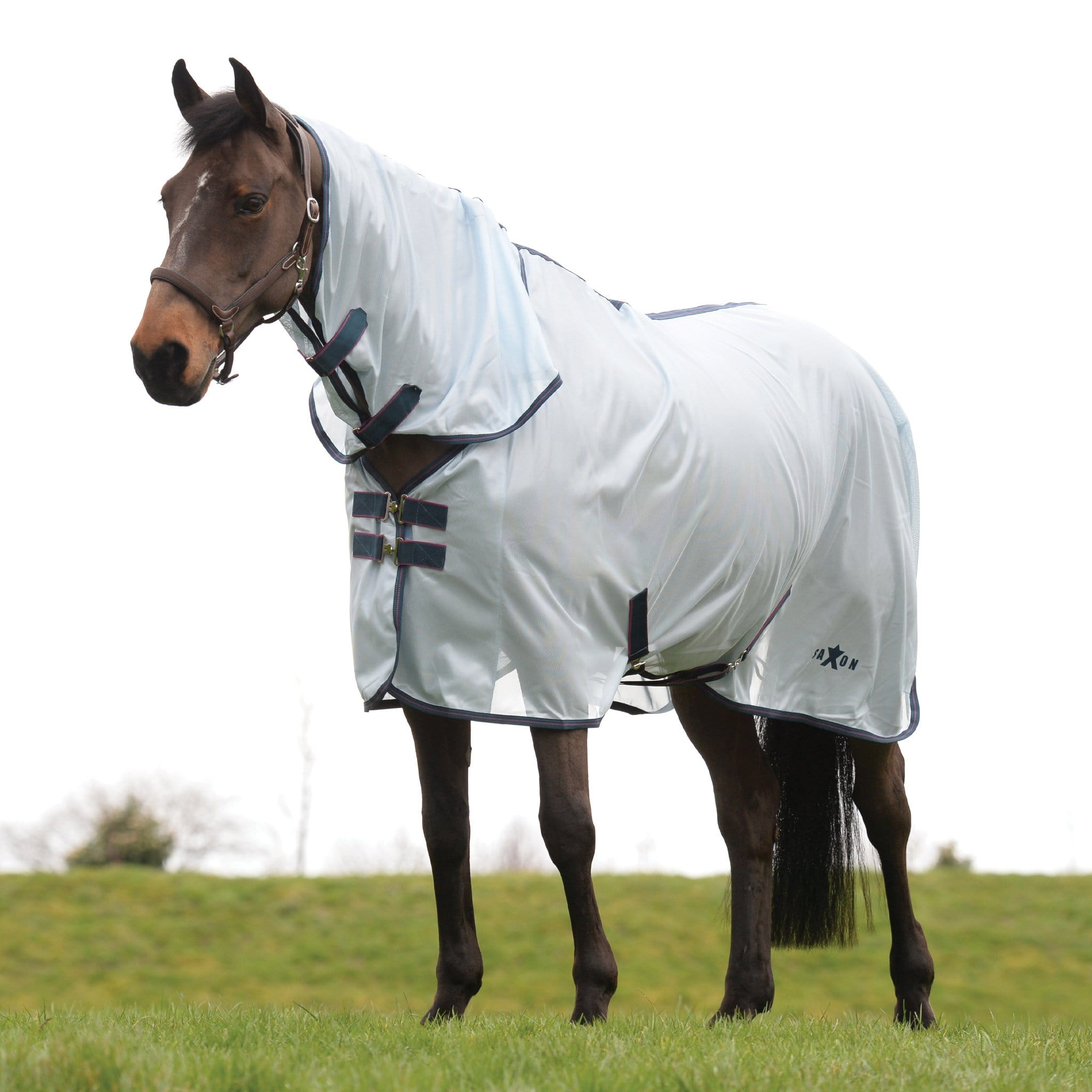 Saxon Mesh Combo Fly Rug 1002942001 Light Blue, Claret, Dark Blue
