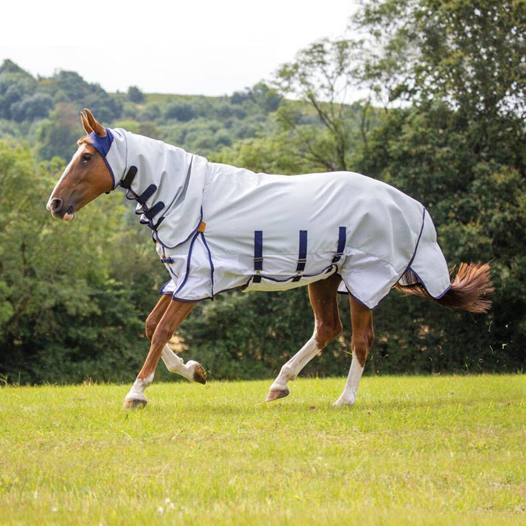 Shires Highlander Plus Sun Shade Combo Fly Rug 9313