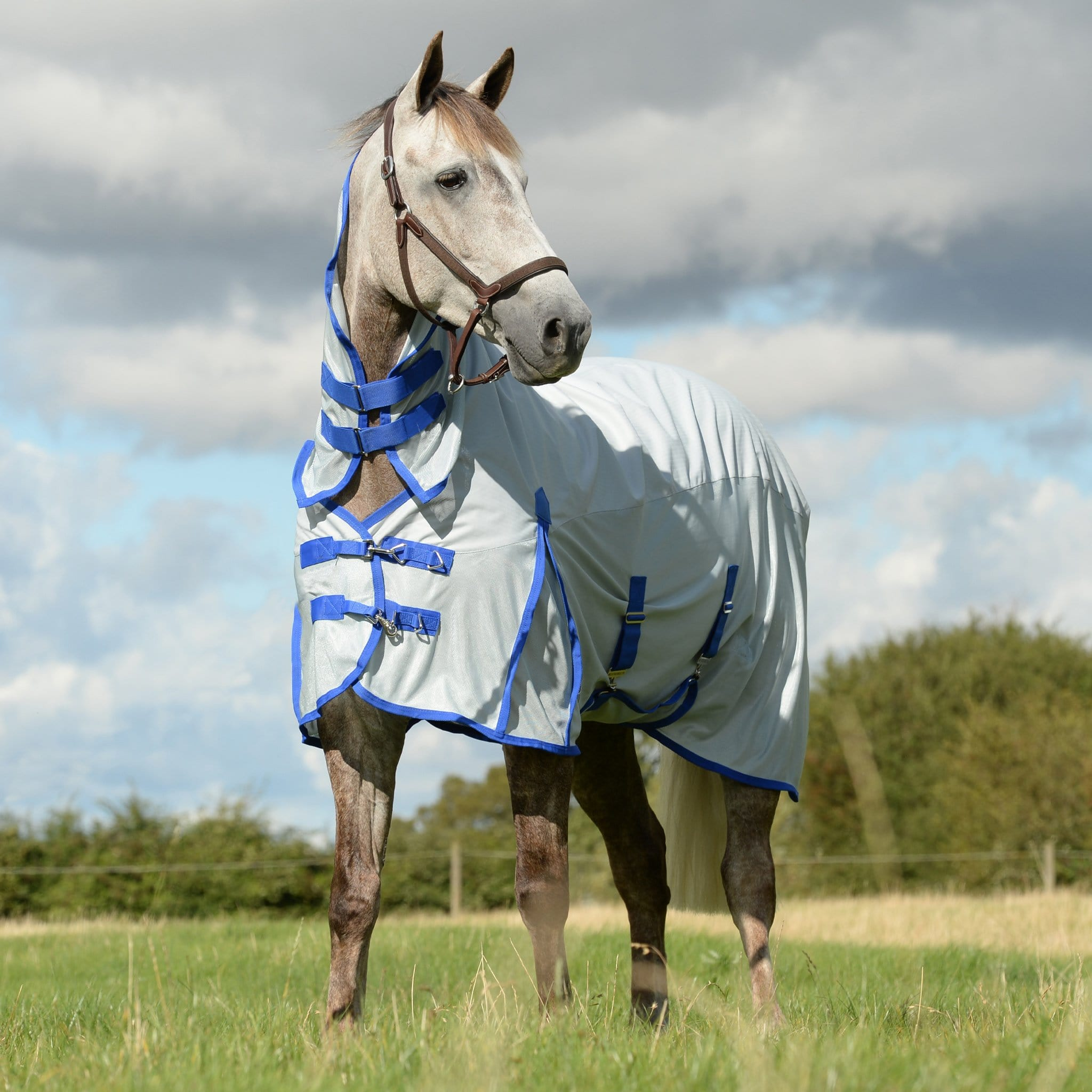 Weatherbeeta ComFiTec 600 Denier Mesh Waterproof Combo Fly Rug Silver 804868 On Grey Horse