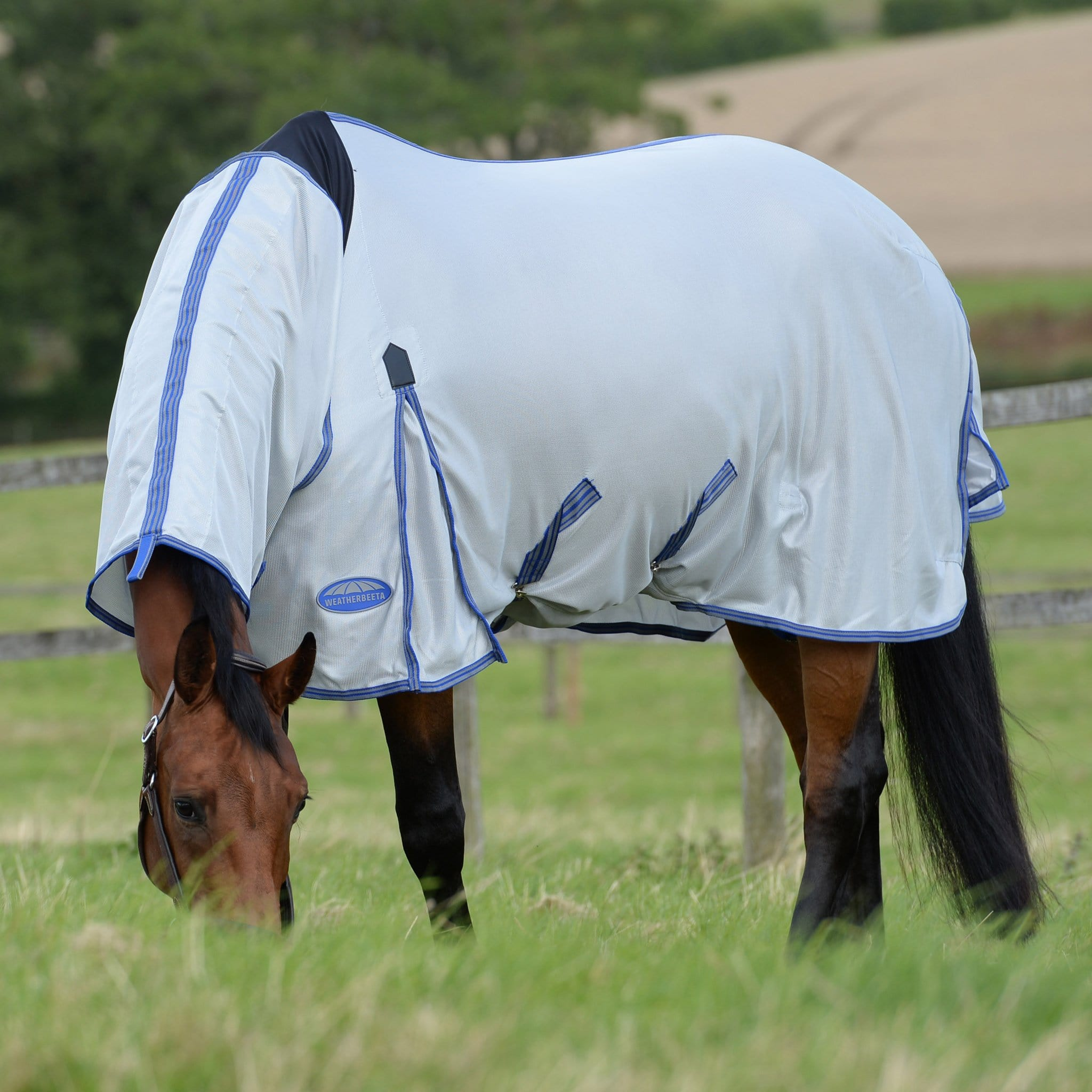 Weatherbeeta ComFiTec Airflow II Combo Fly Rug 1002926001 Grey and Blue Horse Grazing
