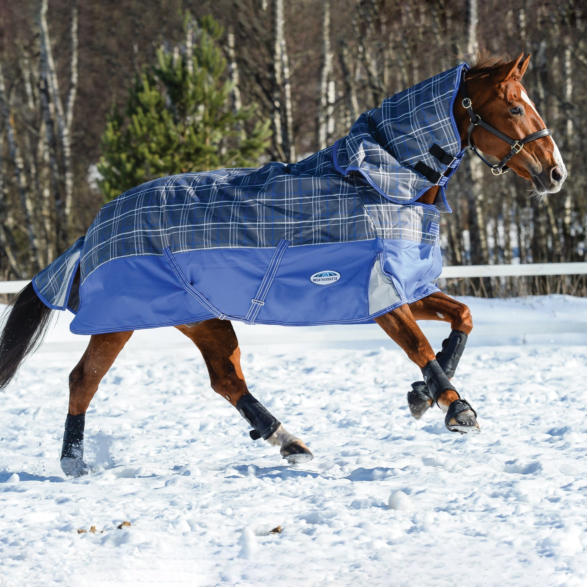 Weatherbeeta ComFiTec Premier Free Heavyweight 360g Detachable Neck Turnout Rug Grey Plaid 801037 Horse In Snow From Side
