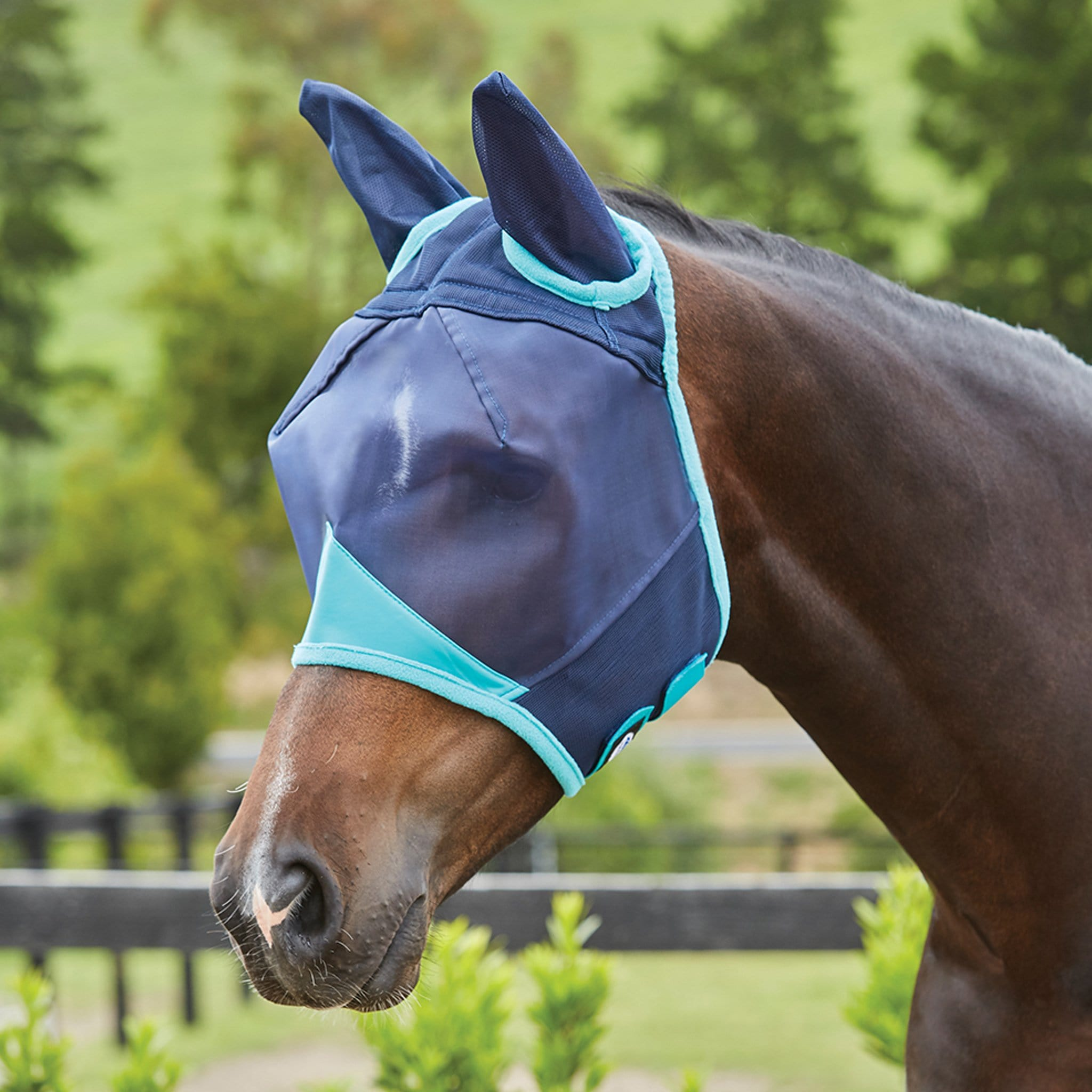 Weatherbeeta Fine Mesh Fly Mask With Ears 1003159001 Navy and Turquoise
