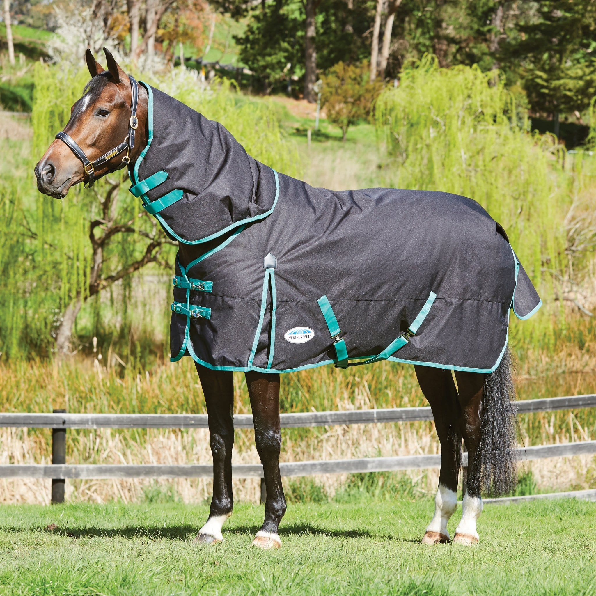 Weatherbeeta Green-Tec Mediumweight 220g Detachable Neck Turnout Rug Black with Green 1004410001