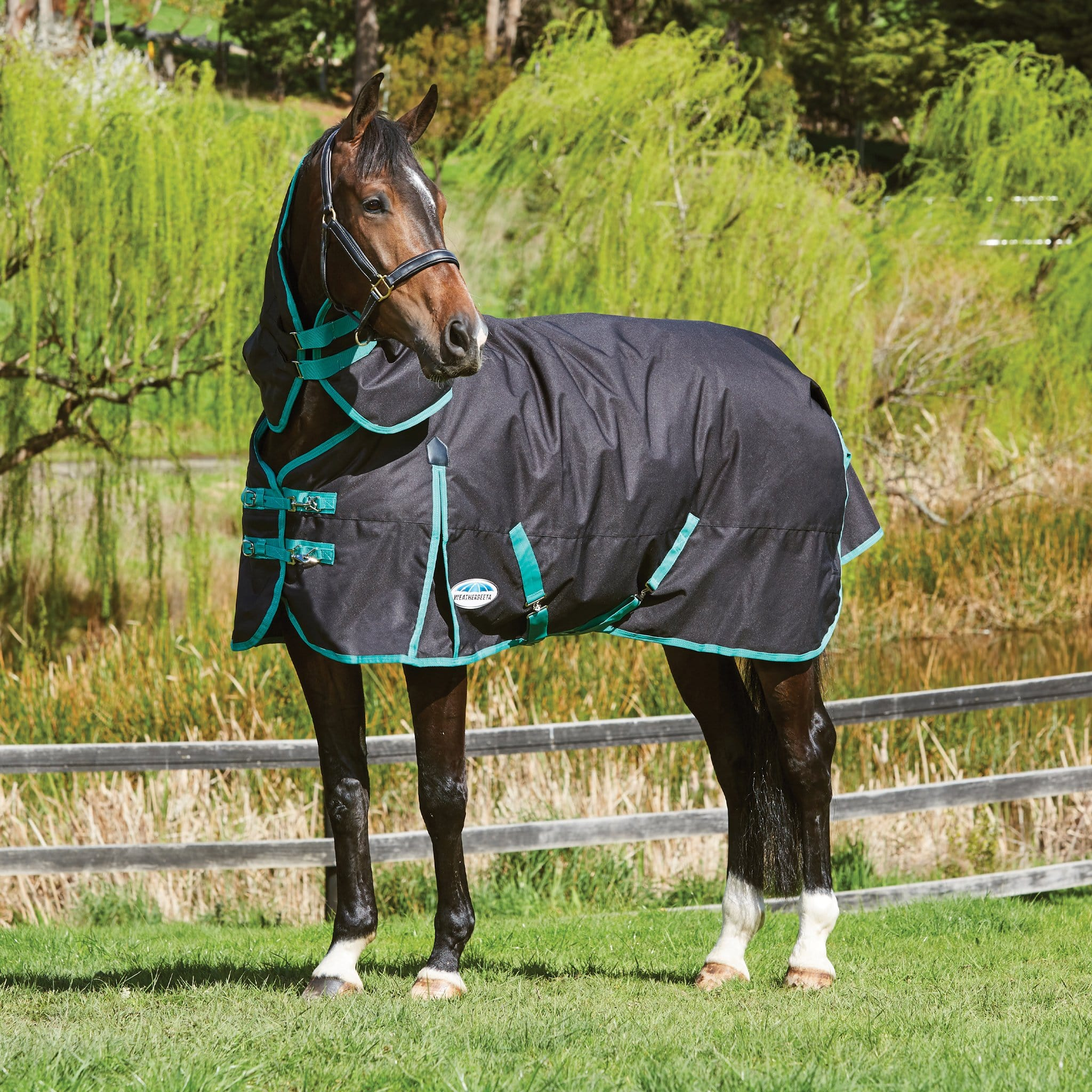 Weatherbeeta Green-Tec Heavyweight 360g Detachable Neck Turnout Rug Black and Green 1004410001
