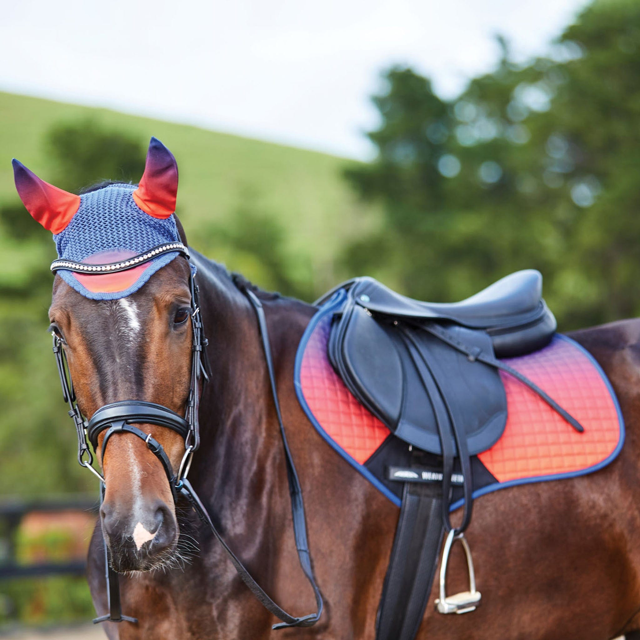 Weatherbeeta Prime Ombre Close Contact Saddle Pad 1002678001 Stormy Sky On Horse With Matching Ear Bonnet