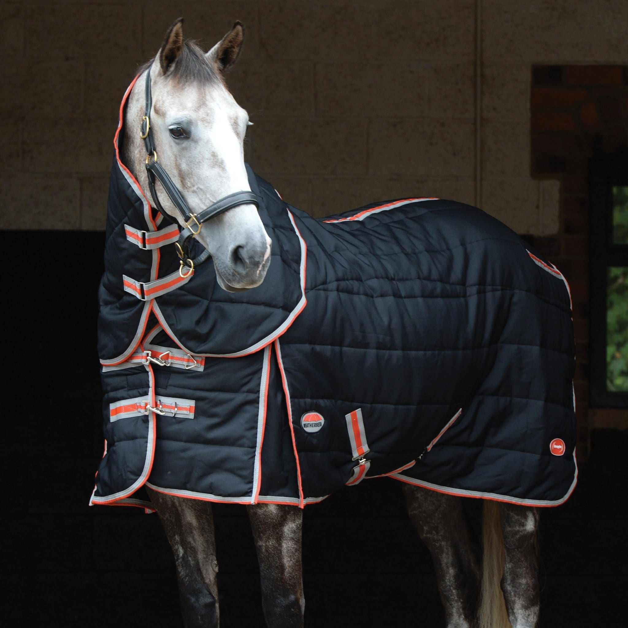 WeatherBeeta ComFiTec Channel Quilt Therapy-Tec Mediumweight 220g Detach-A-Neck Stable Rug 1001613001 On Horse