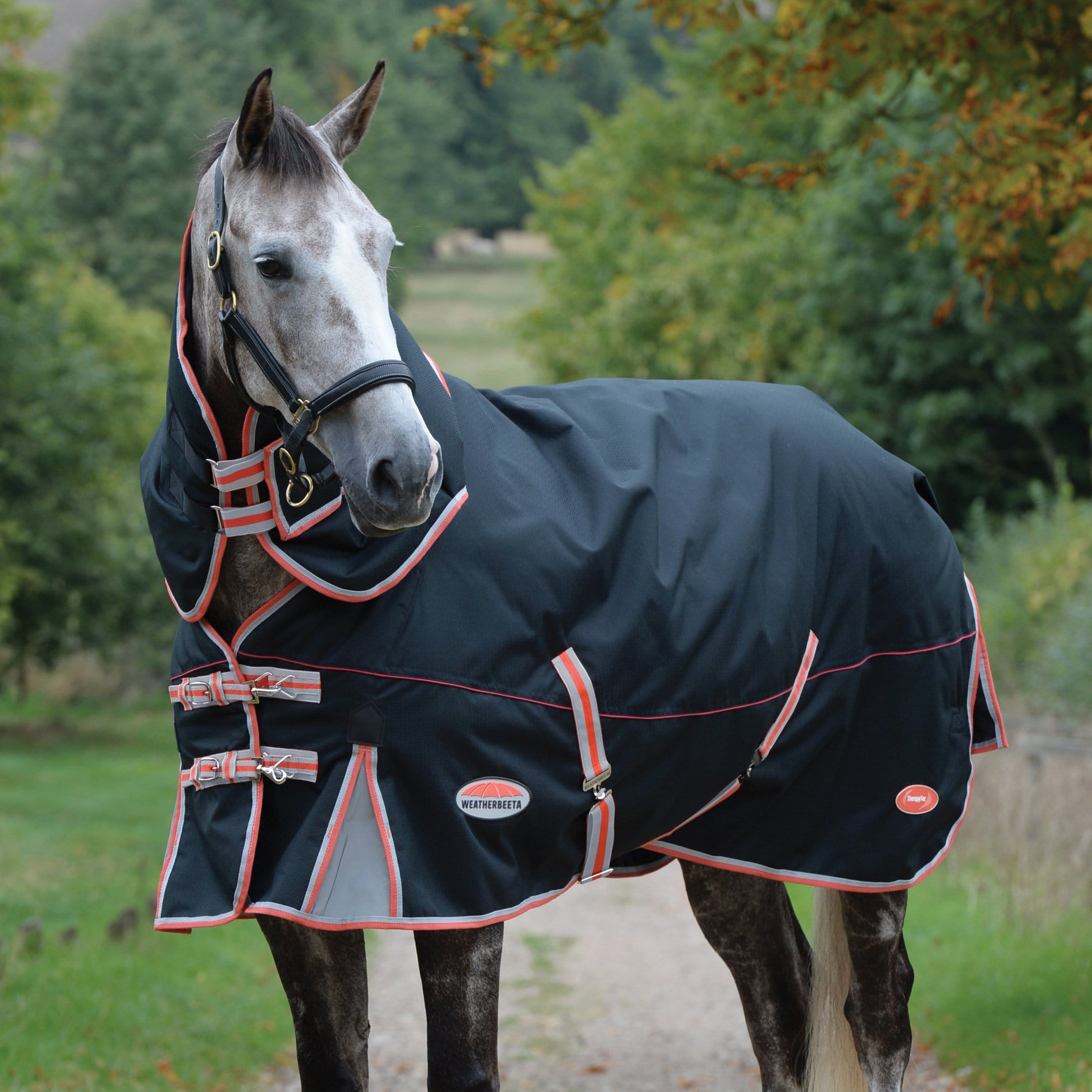 WeatherBeeta ComFiTec Premier Therapy-Tec Mediumweight 220g Detachable Neck Turnout Rug 1001614001 Horse Standing