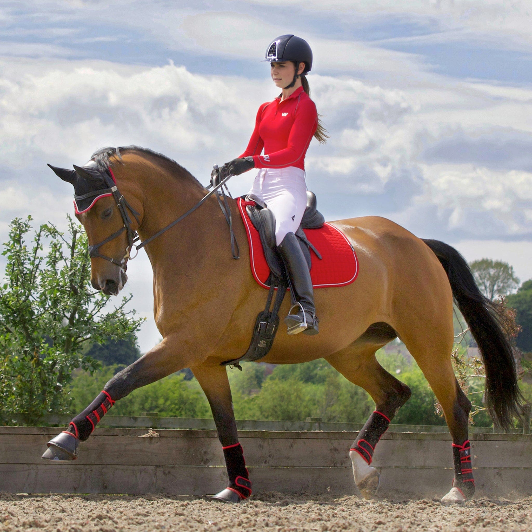 Woof Wear Performance Riding Shirt Royal Red RYRE Rider On Horse Trotting