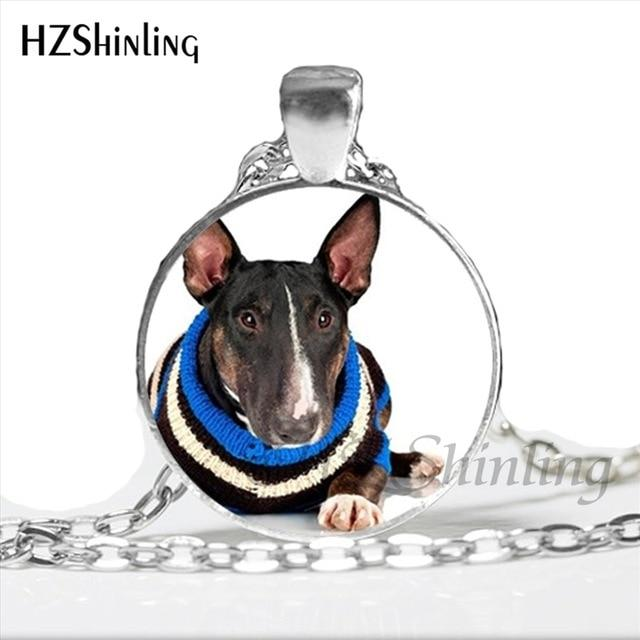 NS-00793 Bull Terrier Dog Cute Animal Photo Glass Necklace Steampunk Silver Long Chain Pendant Jewelry Best Gift For Friend HZ1