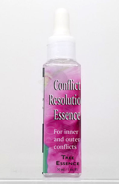 Conflict Resolution Essence