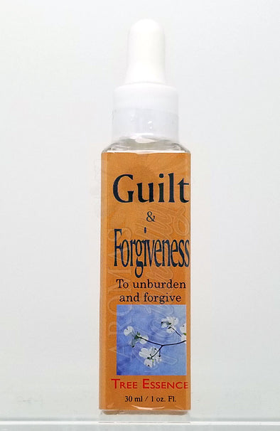 Guilt and Forgiveness Essence