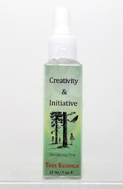 Creativity and Initiative Essence