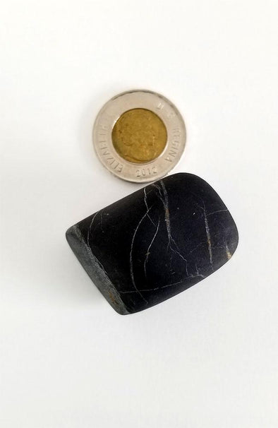 Polished Gemstones - Shungite Palm Stones #53