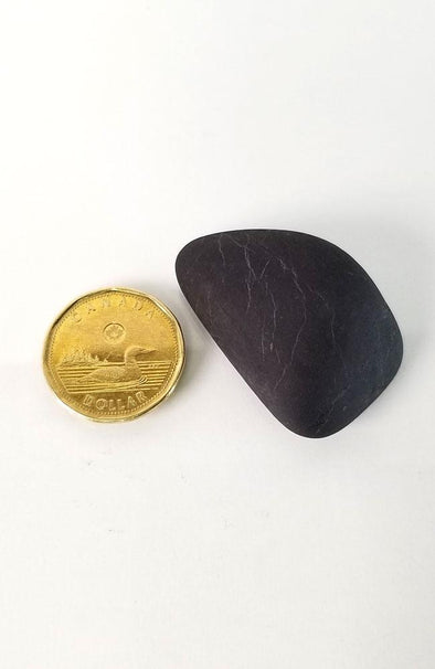 Polished Gemstones - Shungite Palm Stones #41