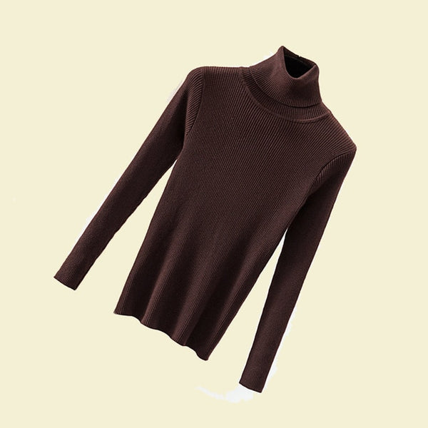 Basic Knit Turtleneck