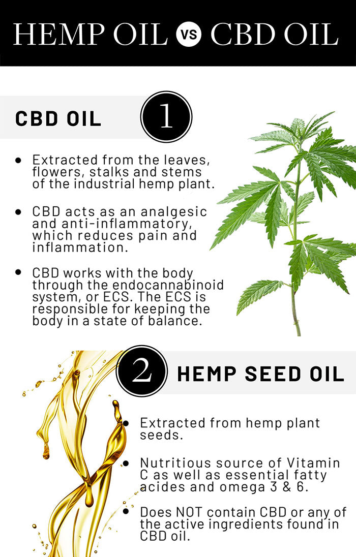What is CBD? Does it really live up to all the hype?   SHEbd