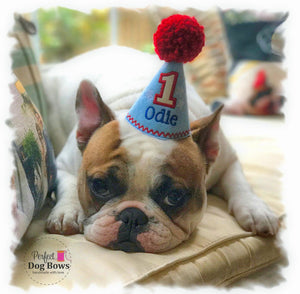 French Bulldog with light blue party hat and red pompom