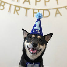 Load image into Gallery viewer, Medium Black Dog with Royal Blue Party Hat