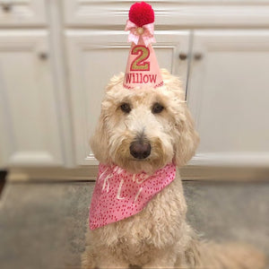 Goldendoodle with pink party hat