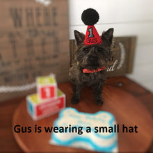 Load image into Gallery viewer, Small Dog wearing Red Party Hat with Black Pompom
