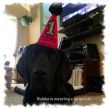 Load image into Gallery viewer, Medium black dog wearing red party hat