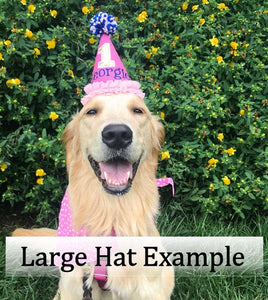 Large dog wearing pink and navy birthday party hat