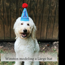 Load image into Gallery viewer, Super Doggie Dog Birthday Hat Personalized for 1st Birthday, Gotcha Day, Cartoon Hero Costume