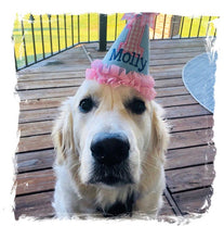 Load image into Gallery viewer, Personalized Dog Birthday Hat Light Blue & Pink Gingham for 1st Birthday, Gotcha Day