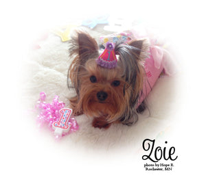 Yellow Birthday Hat Dog Bow Personalized with Rhinestone