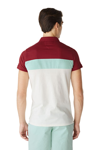 McG Regular Fit color block polo