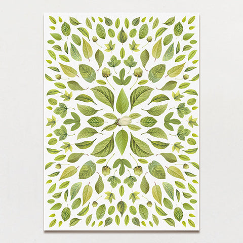 Chartreuse Light Backing