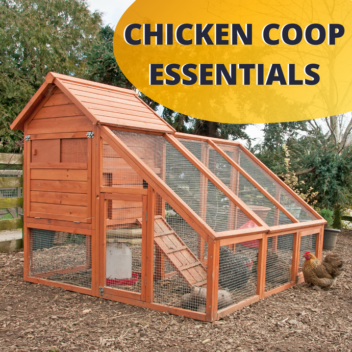 Chicken Coop Essentials