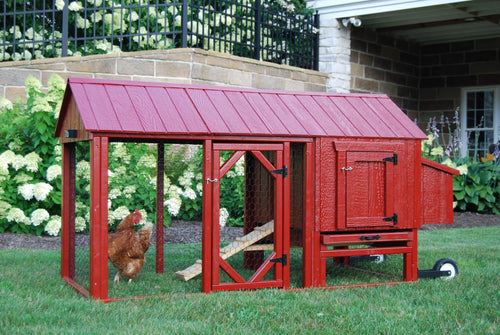Atlanta City Chicken Coop Kit