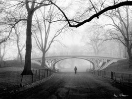 Henri Silberman - Gothic Bridge, Central Park NYC