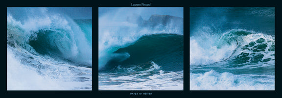 Laurent Pinsard - Waves in motion