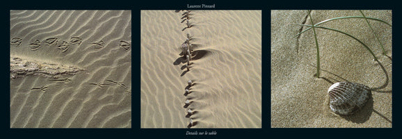 Laurent Pinsard - Details sur le sable