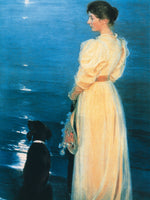 Peter Severin Krøyer - Summer evening at Skagen