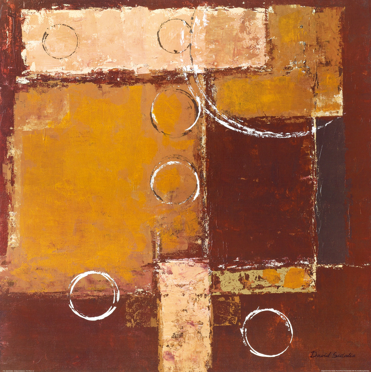 David Sedalia - Circles on red-brown II