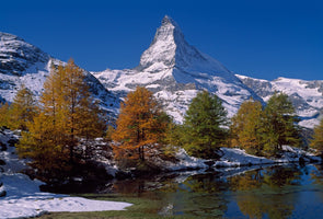 Thomas Marent - Matterhorn with larches II