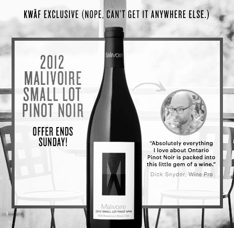 Malivoire 2012 Small Lot Pinot Noir