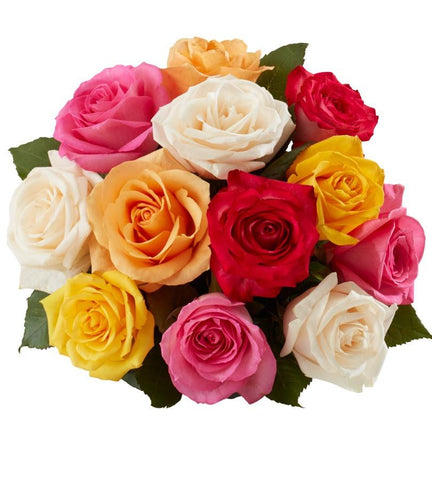 12-Stem Rainbow Rose Bouquet - Slickdeals Exclusive.