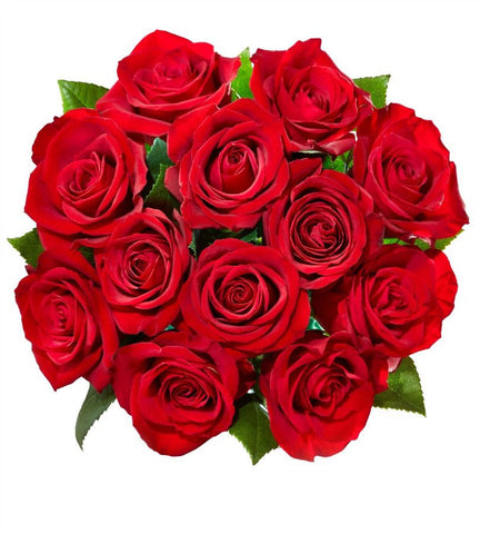 12 Red Roses.-OOS