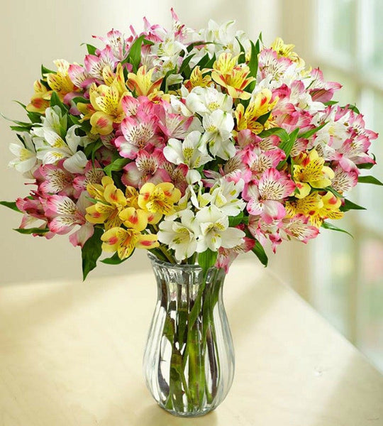 100 Blooms with Clear vase