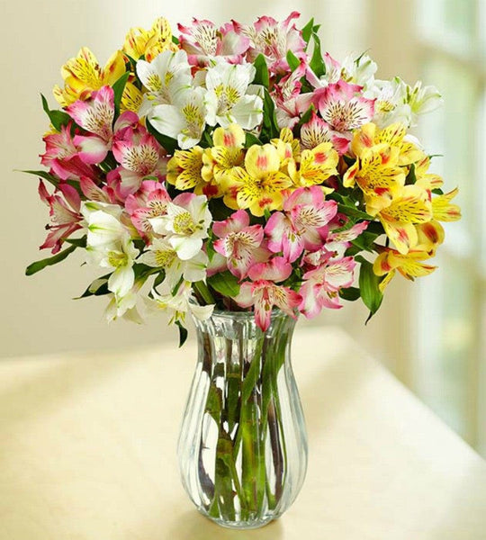 50 Blooms with Clear Vase